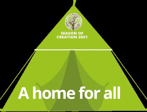 El papa Francesc anima els fidels a unir-se al Temps de la Creació